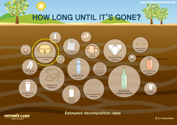 Eco-Friendly Kids Mother's Corn Decomposition Timeline - earth